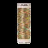 Top stitch, 100m, multicolor (col 2004)